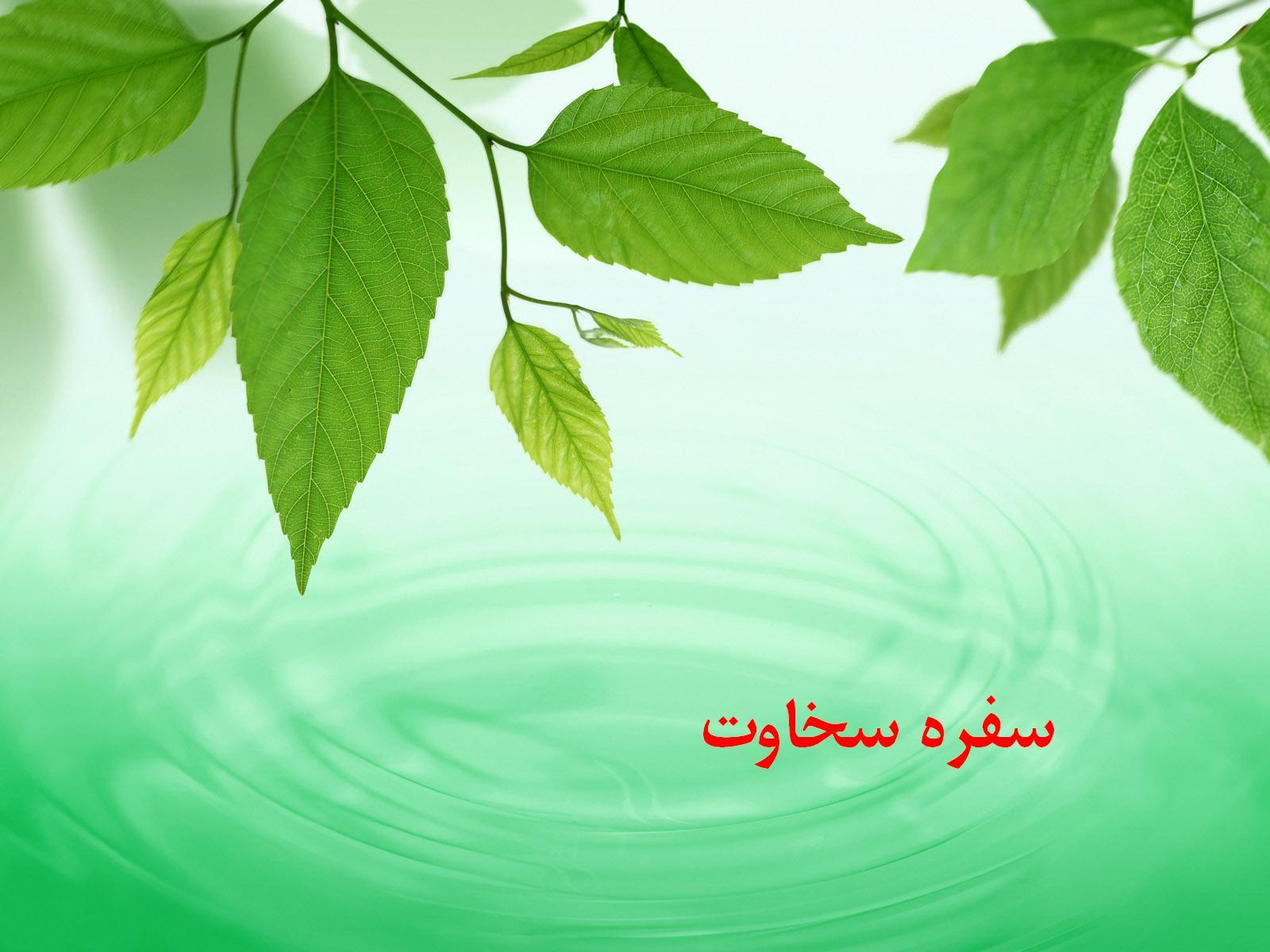 1600green_5001
